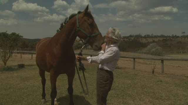 mature lady with horse, australia - three quarter length stock videos & royalty-free footage