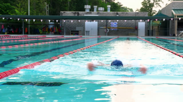 ms mature male athlete swimming butterfly during morning workout - butterfly stroke stock videos and b-roll footage