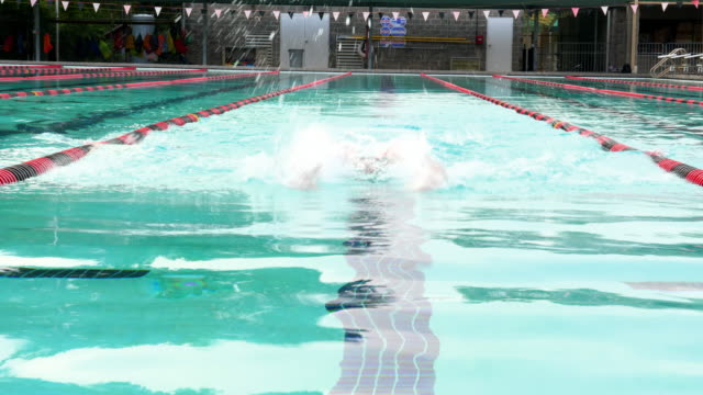 MS Mature male athlete swimming butterfly during morning workout