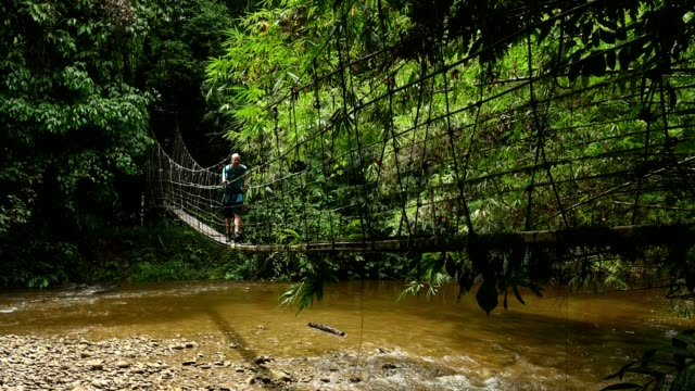 mature male crossing river on footbridge in mulu national park - malaysia stock videos & royalty-free footage