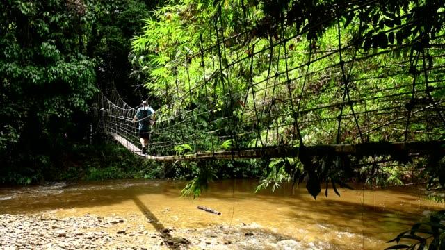 ムル国立公園の歩道橋で川を渡る成熟した男性 - サラワク州点の映像素材/bロール