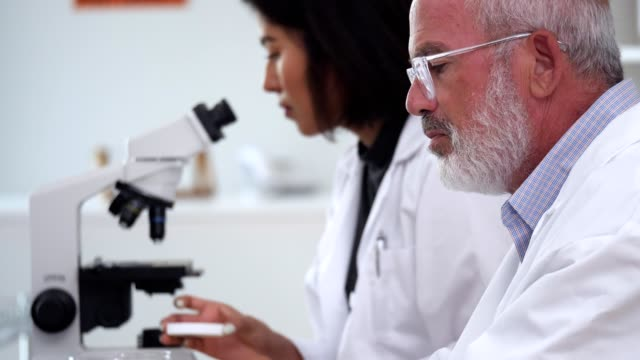 mature male scientist using laptop in lab - scientific sample stock videos & royalty-free footage
