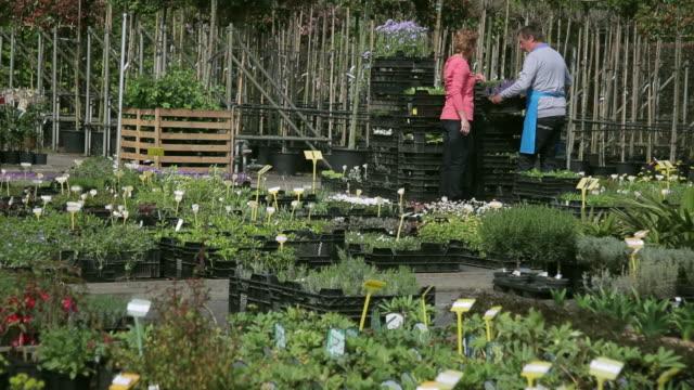mature male worker showing plants to female customer in garden centre - centro per il giardinaggio video stock e b–roll