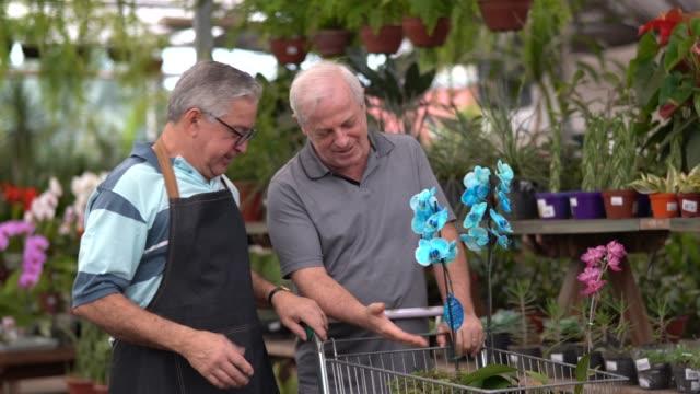 mature man customer and salesman at flower market - formal garden stock videos & royalty-free footage