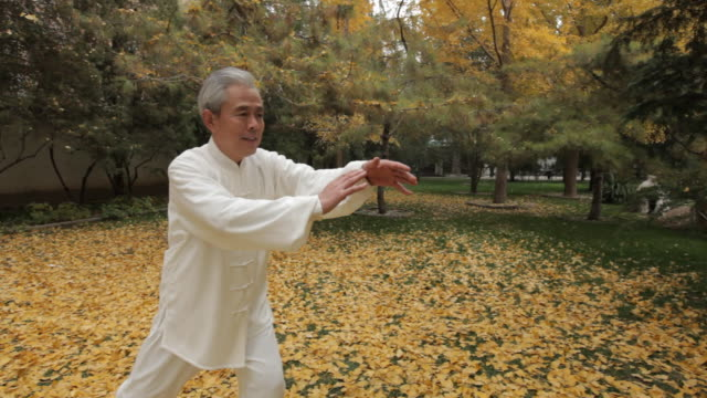 TU MS PAN Mature man doing Tai Chi in park / China