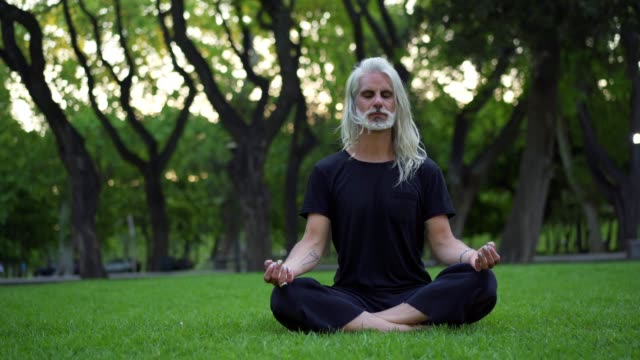mature man doing yoga in park - long hair stock videos & royalty-free footage