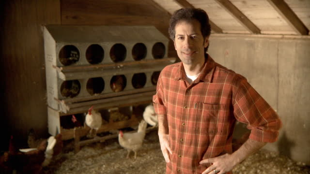 MS Mature man  in coop checking chickens and smiling / Wilmington, Illinois, USA
