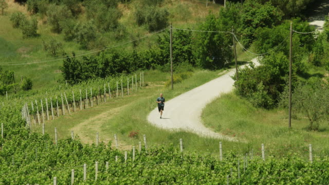 ws ha mature man jogging through country road / tuscany - newoutdoors stock videos & royalty-free footage