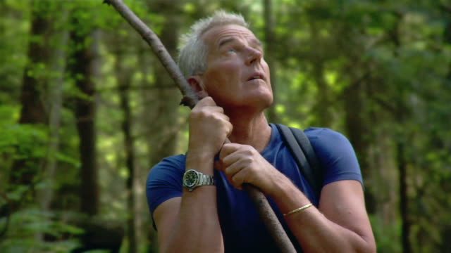 mature man leaning on walking stick during hike and looking upwards - kelly mason videos stock videos & royalty-free footage