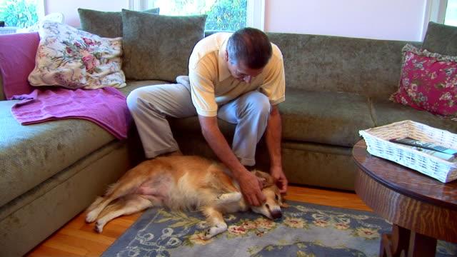 Mature man petting dog