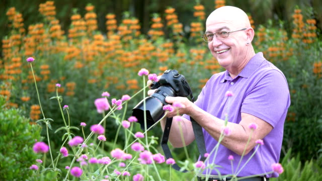 mature man photographing flowers in park - formal garden stock videos & royalty-free footage