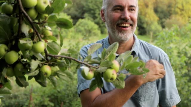 vidéos et rushes de homme d'âge mûr ramasser une pomme d'un arbre et l'onde aux agriculteurs sur un champ à proximité - pomme