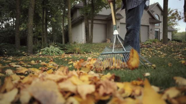 vídeos de stock e filmes b-roll de ms tu td mature man raking fallen leaves in yard / neenah, wisconsin, usa  - ancinho equipamento de jardinagem