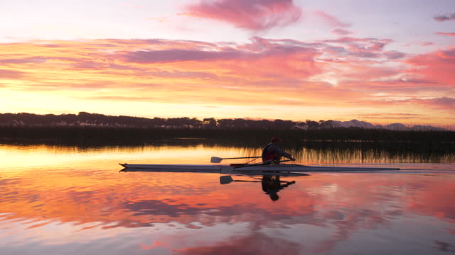 mature man rowing a single scull on a lake at dawn - scull stock videos & royalty-free footage