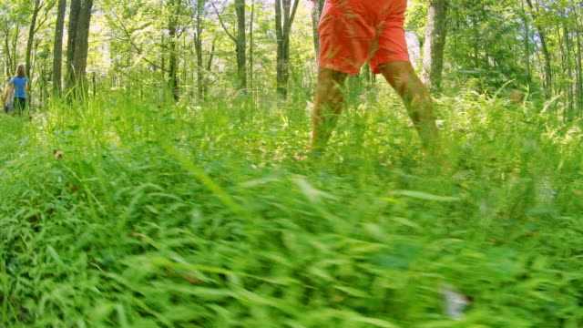 vídeos y material grabado en eventos de stock de hombre maduro caminando por un sendero en el bosque en poconos, pennsylvania, eeuu en el caliente soleado día de verano. - 35 39 años