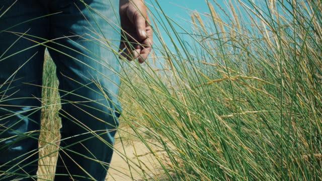 mature man walking through long marram grass. - sand dune stock videos & royalty-free footage