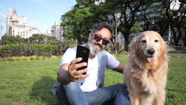 mature man with golden retriever dog walking in the park in afternoon - photographing stock videos & royalty-free footage