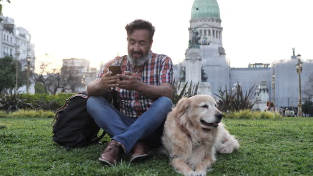 mature man with golden retriever dog walking in the park in sunset and using phone - handsome people stock videos & royalty-free footage