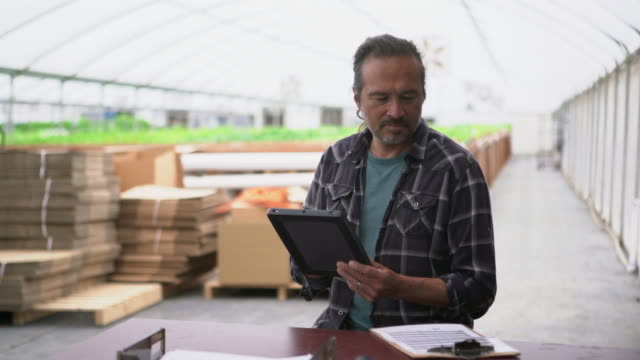 vídeos de stock e filmes b-roll de ms mature man working on a digital tablet in a greenhouse - alface