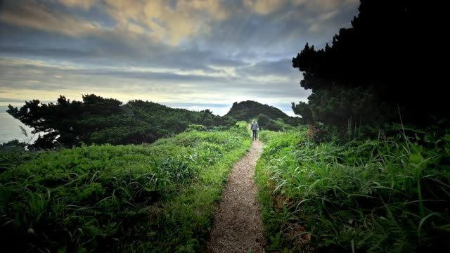mature, middle aged woman hiking trail by ocean at sunset - thoroughfare stock videos and b-roll footage