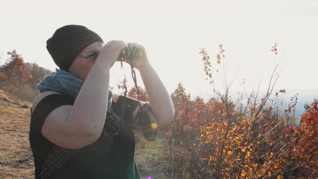 mature optimistic body-positive woman exploring the nantahala national forest with the binocular. - environmentalist stock videos & royalty-free footage