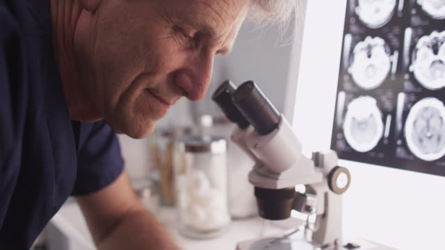 mature scientist looking into microscope - bone stock videos & royalty-free footage