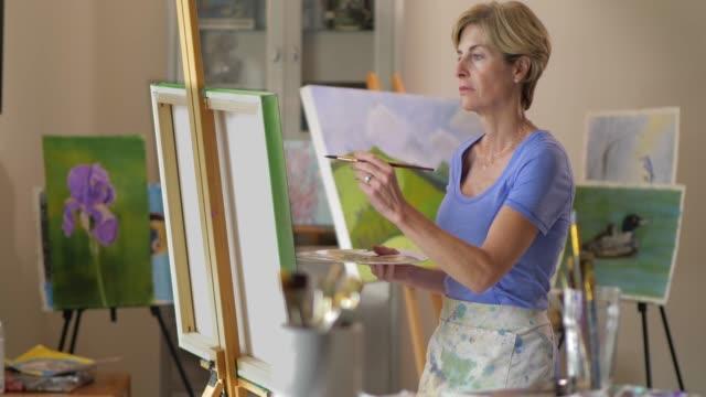 vídeos de stock e filmes b-roll de mature woman artist - pintar