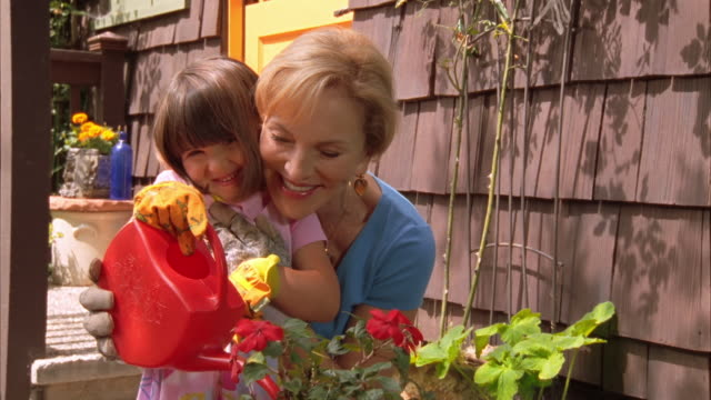 cu, mature woman assisting granddaughter (4-5) watering potted flowers in garden, cambria, california, usa - 注ぎ口点の映像素材/bロール