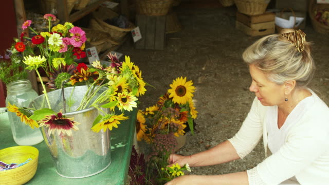 MS PAN TU Mature woman buying flowers at local farm stand / Dorset, Vermont, USA