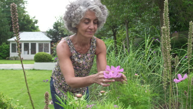 Mature woman checking her plants in the backyard garden