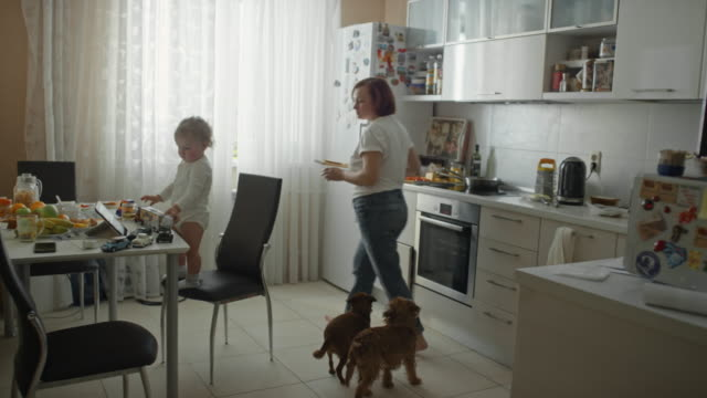 mature woman giving apple juice to playing baby boy - tempo reale video stock e b–roll
