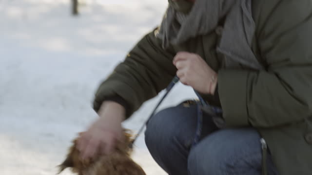 Mature woman petting small dog in park in winter