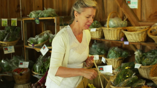 MS PAN TU TD Mature woman shopping at local farm stand / Dorset, Vermont, USA