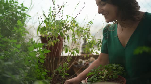 mature woman taking care of plants on balcony - 40 44 years stock videos & royalty-free footage