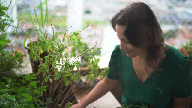 mature woman taking care of plants on balcony - recreational pursuit stock videos & royalty-free footage