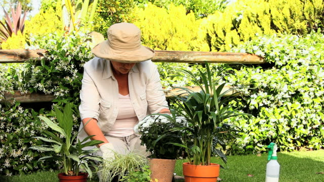 stockvideo's en b-roll-footage met mature woman tending to her plants / cape town, western cape, south africa - alleen één oudere vrouw