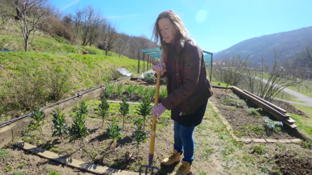 mature woman using gardening fork - one mature woman only stock videos & royalty-free footage
