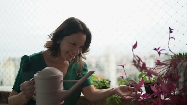 vídeos de stock e filmes b-roll de mature woman watering plants on balcony - mulheres maduras