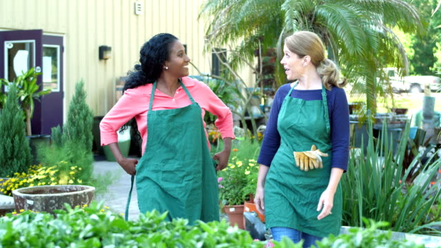 mature women walking in plant nursery, putting on apron - apron stock videos & royalty-free footage