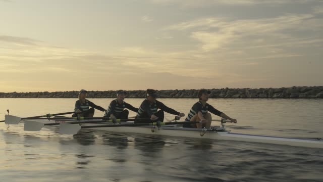 mature women's rowing team. - sport rowing stock videos & royalty-free footage