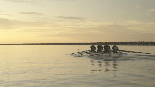 mature women's rowing team. - harmony stock videos & royalty-free footage