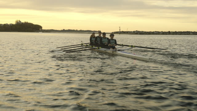 mature women's rowing team. - team sport stock videos & royalty-free footage