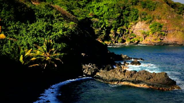 maui rocky spiaggia vulcanica - oceano pacifico video stock e b–roll