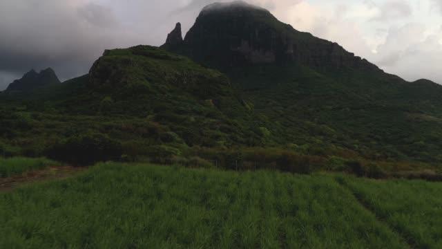 vidéos et rushes de pics de montagne belle ile maurice dans l'environnement de nature sauvage - parallèle