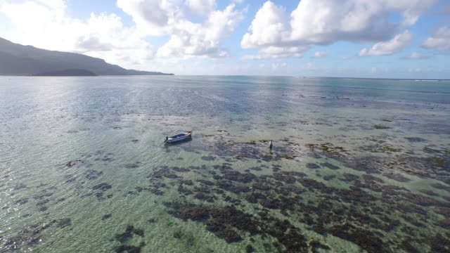 mauritius - shallow stock videos & royalty-free footage
