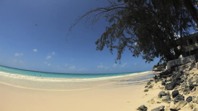 stockvideo's en b-roll-footage met ws pan fish eye maxwell beach / oistins, christ church, barbados - caraïbische zee