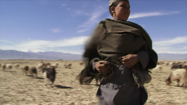 May 1 2009 MS Teenage herder with goats in pasture / Bagram Afghanistan