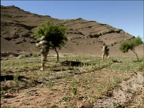 may 2004 wide shot pan three us soldiers running across field with rifles aimed/ oruzgan province afghanistan/ audio - army soldier stock videos & royalty-free footage