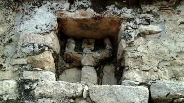 ms zi mayan carving / coba ruins, mexico - latin american civilizations stock videos and b-roll footage