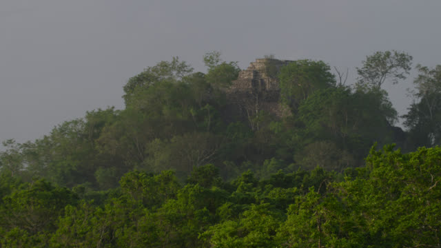 """Mayan temple ruin in forest, Calakmul, Mexico"""